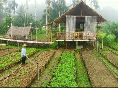 CÁC FARMSTAY ĐẸP NHẤT THẾ GIỚI NÊN THAM KHẢO