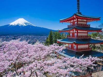 17 đặc trưng kiến trúc ấn tượng trong ngôi nhà truyền thống Nhật Bản